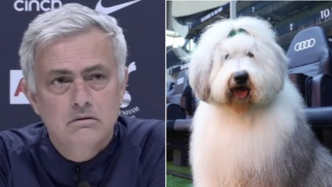 Mourinho's baffled response after new Tottenham sponsor Dulux brutally mocks club